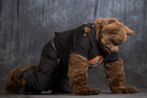 Mid-TF Were-Bear Partial Costume 4-legged pose