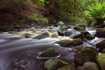 Cragside River