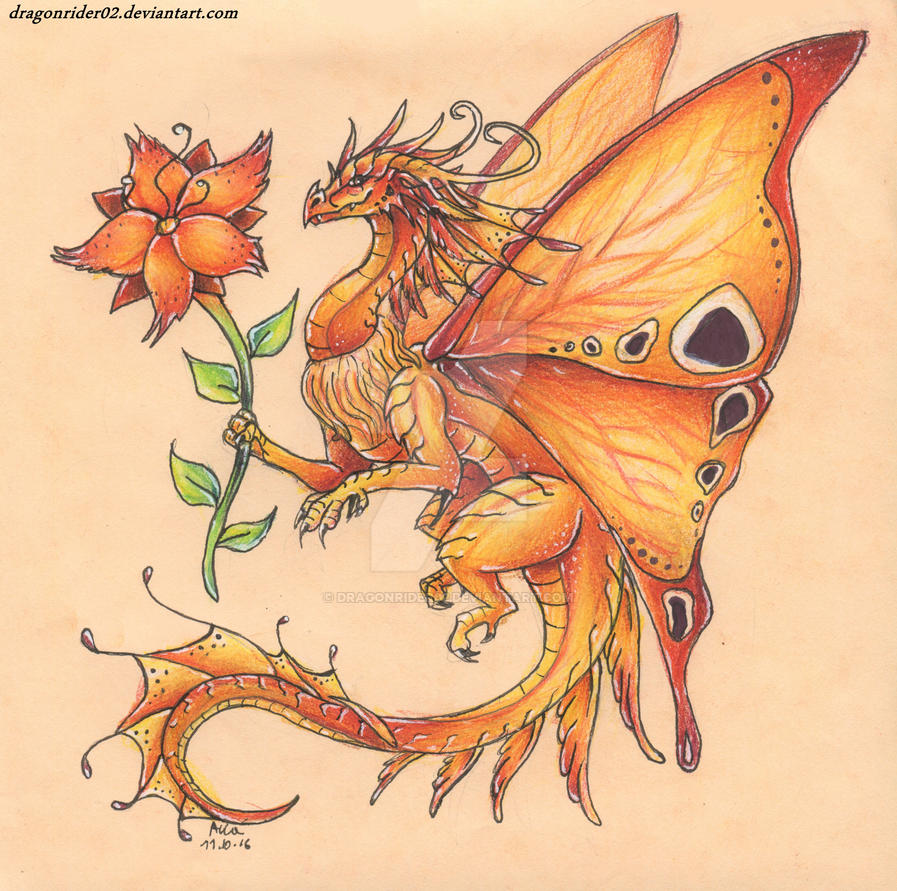 Fire Butterfly Dragon By DragonRider02 On DeviantArt