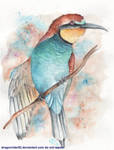 Bee-eater by DragonRider02