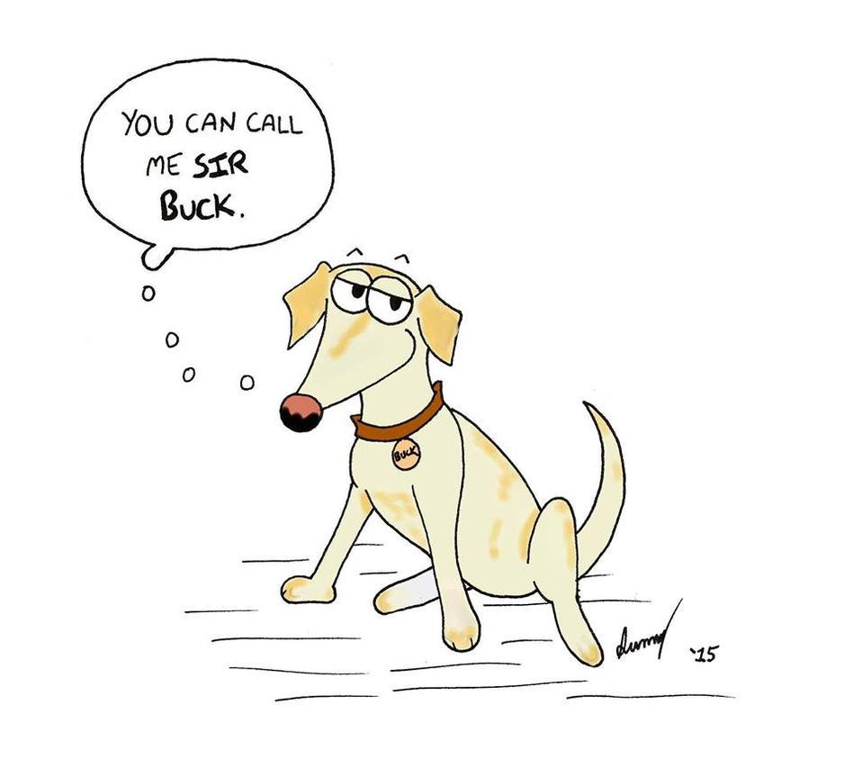 Custom Dog Cartoon by SunnyArts