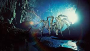 Arachnophobia by iBlackrow