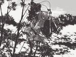 Armin Arlert / Shingeki no Kyojin