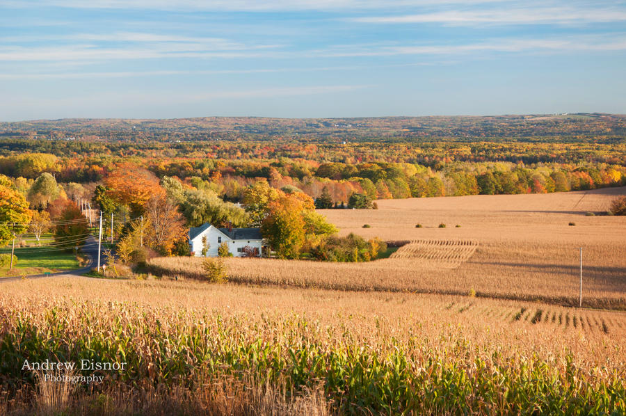 Fall in the Country by AEisnor