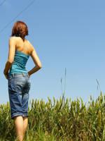 in the fields 1 by do0dz-stock