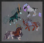 equine adoptables - [sold]