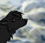Howl Animation by Tuco