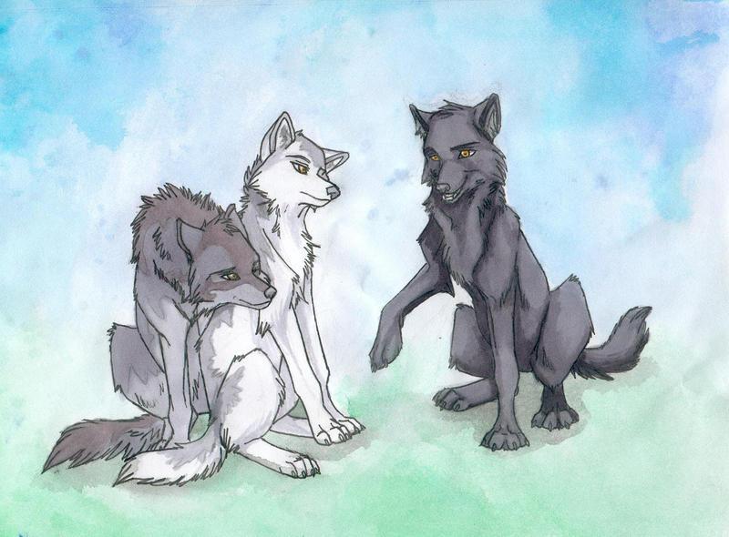 black anime wolf pup. anime wolf pup. lack anime