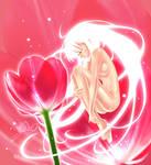 BanQ_Romance of Tulip