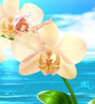 BanQ_Sensation of Orchid