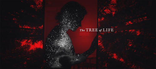 Tree of Life (2) by OldChili