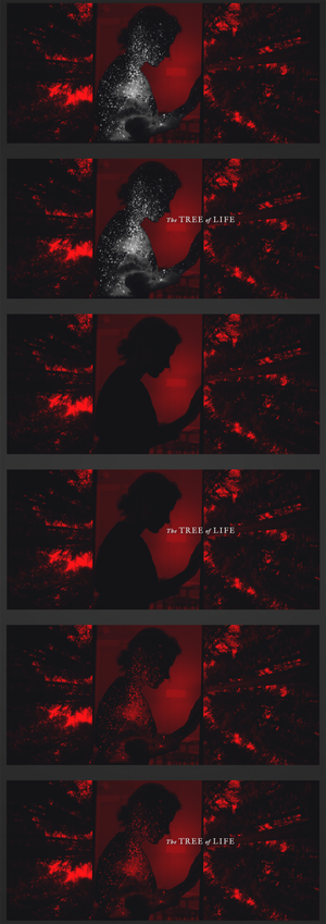 Tree of Life (2) - Variations