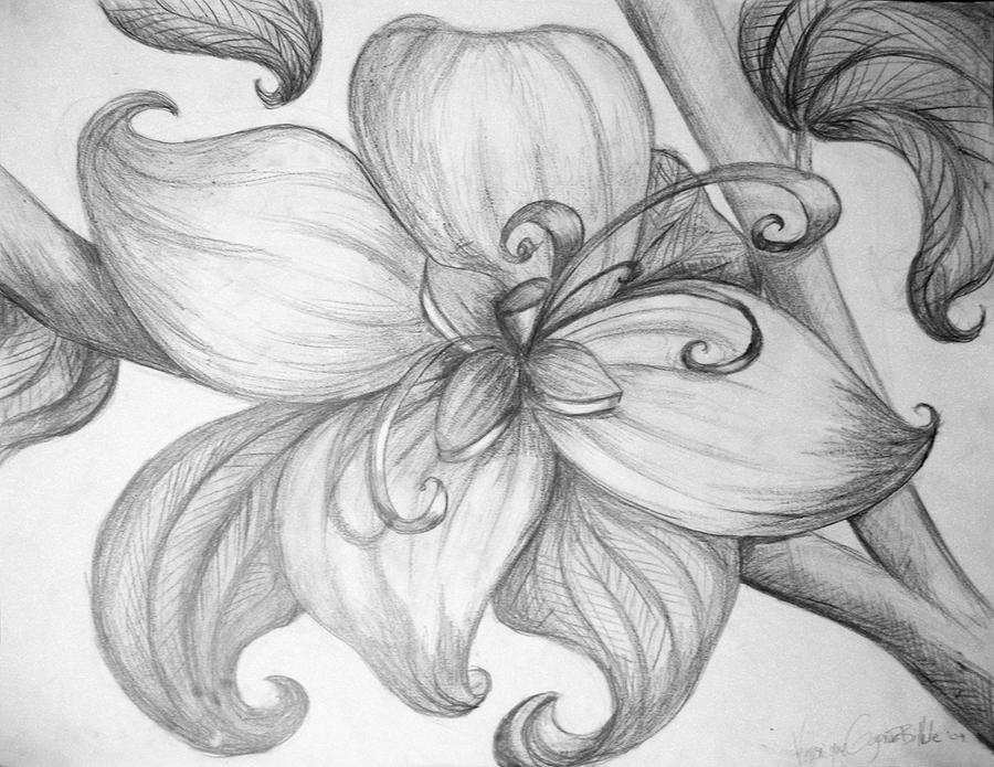 Exotic flower by ninique on deviantart for How to draw a hard flower