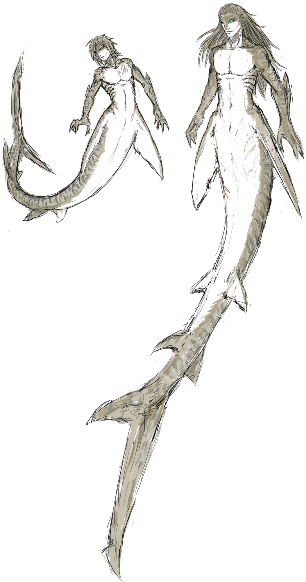 Shark hybrid drawing - photo#42