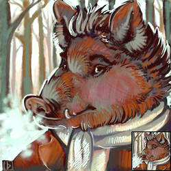 Winter Icons - Foxfeather by thornwolf