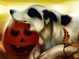Autumn Apache by thornwolf