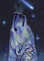 Starlight by thornwolf