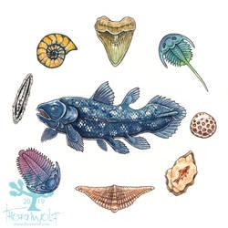 Ocean Treasures - Ancients