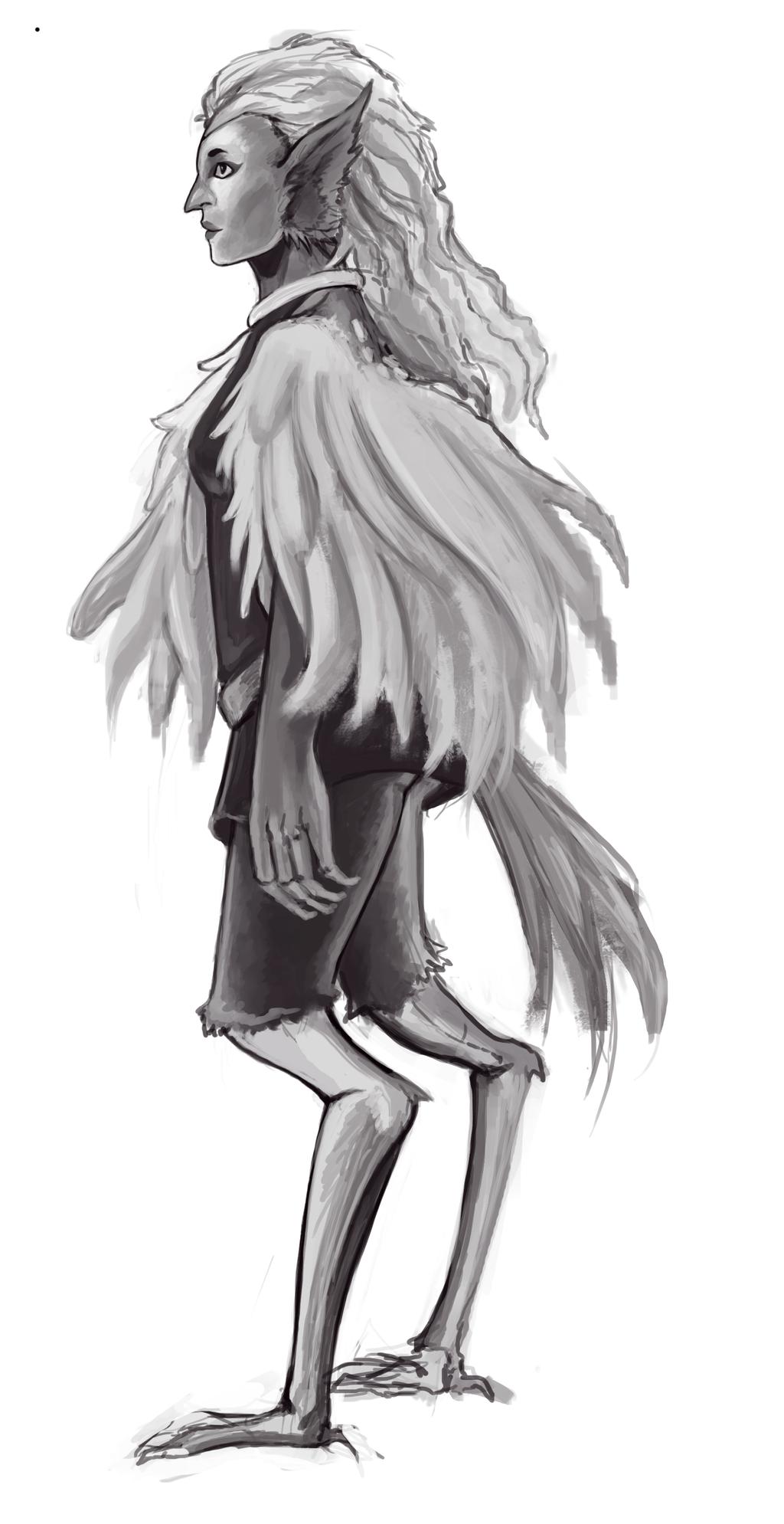 bird race concept art by MidnightZone