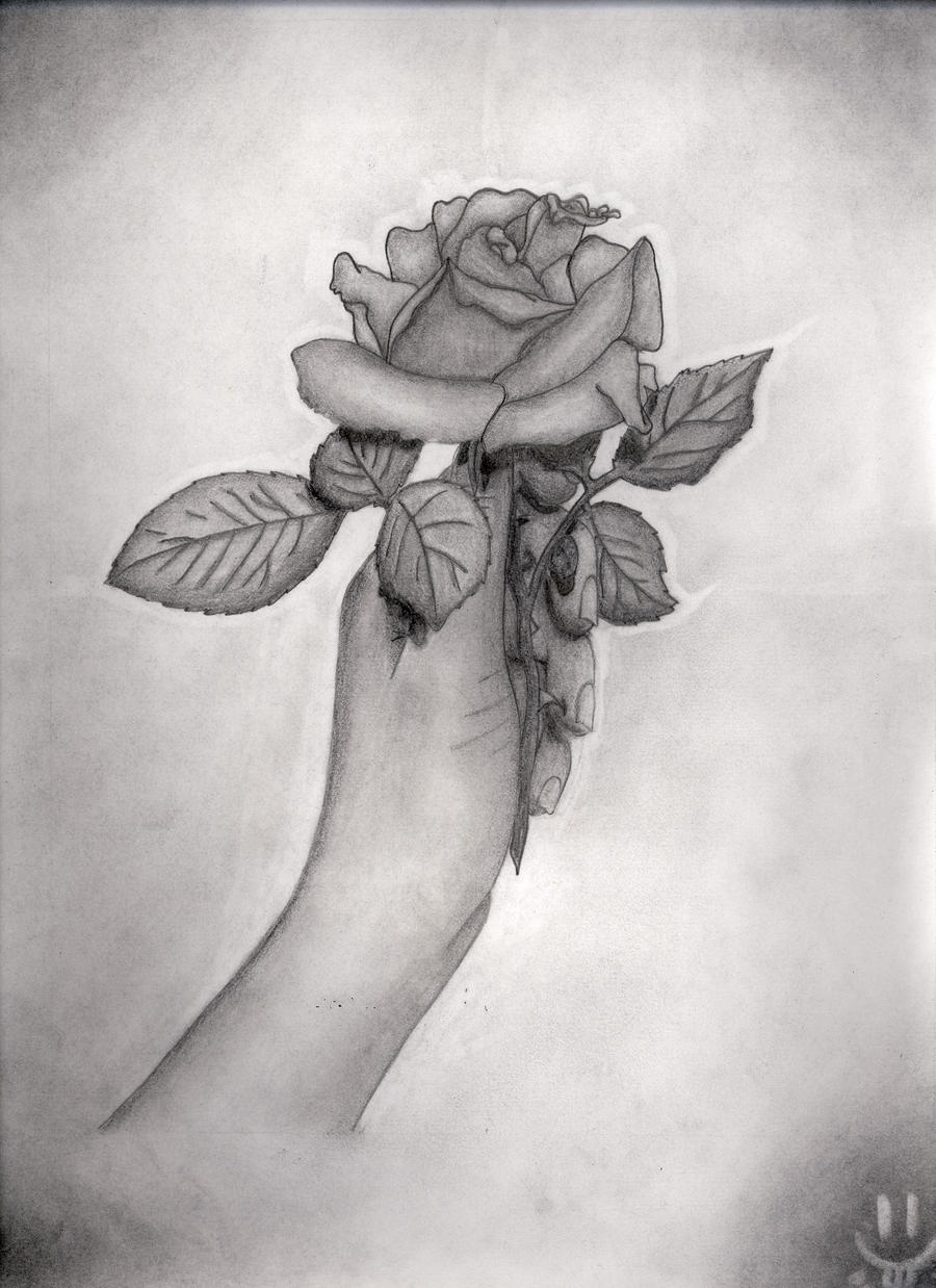 Hand Holding Rose Drawing Hand Holding Rose by