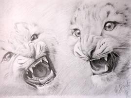 innocent predators by Lotkass