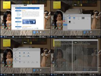 KDE4 Grid desktop screenshot