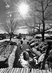 Winter Sunburst of Stream in Black and White by 4umypix
