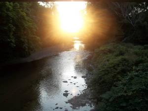Calming Light of Day