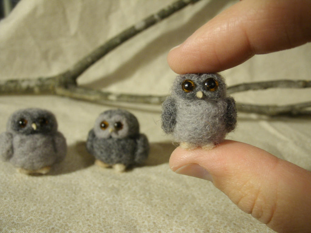 Tiny Trio of Tubby Owls by JessieDockins