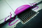Storm Drain Octopus