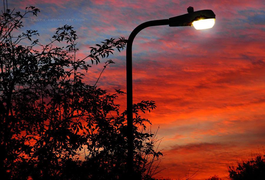 Sunset Streetlight by Lanzie