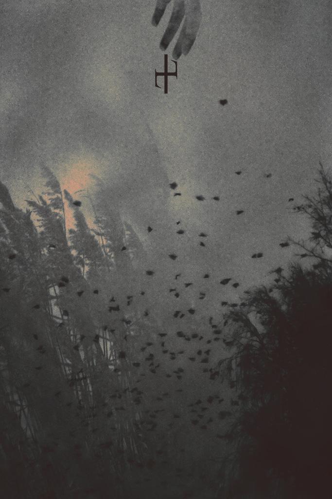 tears like birds by gr4y-inu