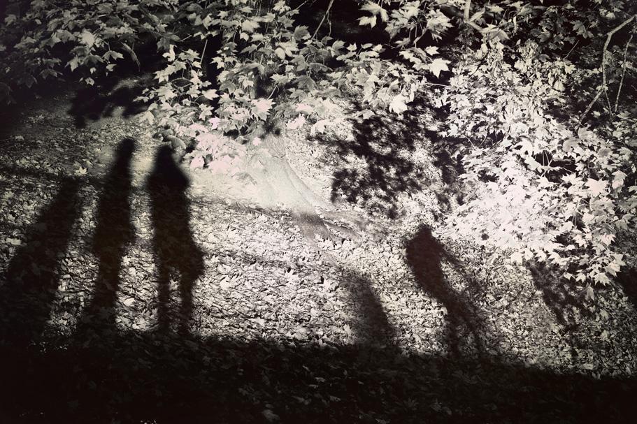 shadowplay by gr4y-inu