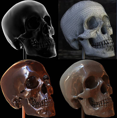 Skull Texture Test in 3D Studio Max 2011