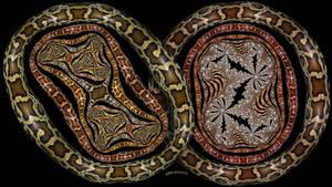 Python Julias by bryceguy72