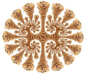 Fractal Cookies!