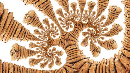 Fractal Cookie Zoom
