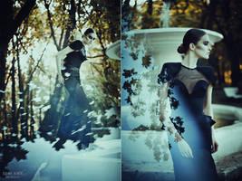 Sublimation. The Black Swan by BirdSophieBlack
