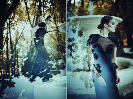 Sublimation. The Black Swan