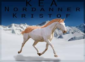 7313 Kristof by 4TheLoveOfAnimation