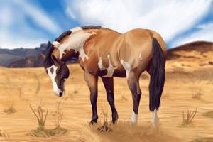 Desert Days by 4TheLoveOfAnimation