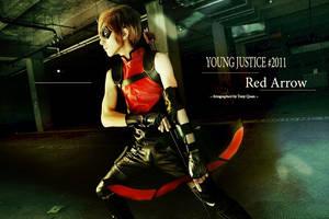 Red Arrow by bluevis