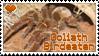 Stamp- Goliath Birdeater by DarylsChupacabra