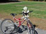 Yoda with a Bike by GraceJediHeart