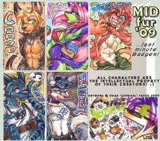 MF 09 'last minute' Badges by carnival