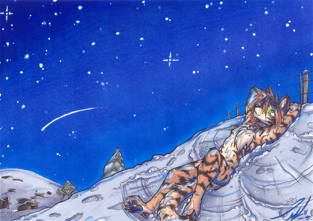 Com- Under a chilled night sky by carnival