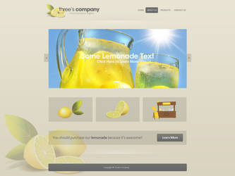 Simple 1 Page Homepage Design by esr360