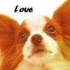 doggie avatar 001 by shetanka