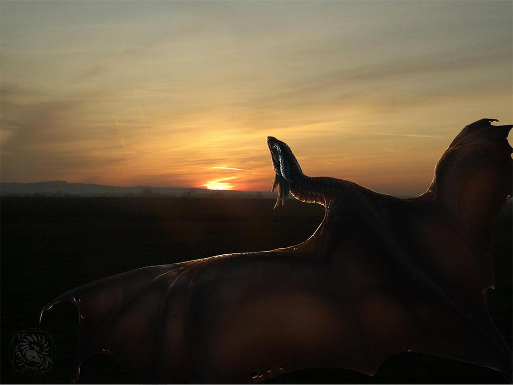Sonnenuntergang by AverrisVis
