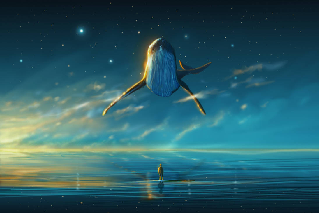 Good Morning Whale
